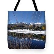 Pikes Peak Through The Grass Tote Bag