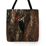 Pileated In Winter Tote Bag