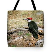 Pileated Woodpecker Forest Floor Tote Bag