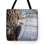 Pileated Woodpecker Winter Tote Bag