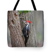 Pileated Woodpecker Foraging Tote Bag