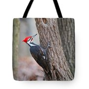Pileated Woodpecker On Tree Tote Bag