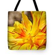 Pin Striped Tulip Tote Bag