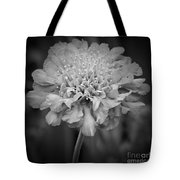 Pincushion Bw Tote Bag