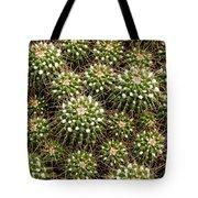 Pincushion Cactus Tote Bag