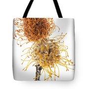 Pincushion Protea Tote Bag