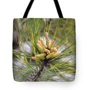 Pine Catkins Tote Bag