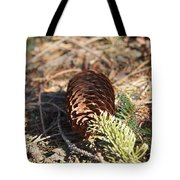 Pine Cone And Small Branch Tote Bag