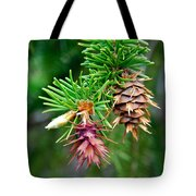 Pine Cone Stages Tote Bag