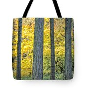Pine Forest In The Autumn Tote Bag