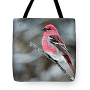 Pine Grosbeak  Pinicola Enucleator Tote Bag