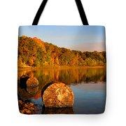Pine Lake Reflection 3 Tote Bag