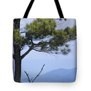 Pine Tree Along The Blue Ridge Parkway Tote Bag