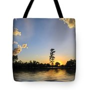 Pine Tree At Sunset Tote Bag