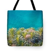Pine Tree Branches With Turquoise Sea Background Tote Bag