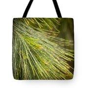 Pine Tree Needles Tote Bag