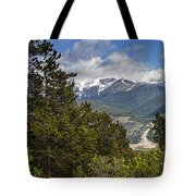 Pine Trees In The Rocky Mountain National Park Tote Bag