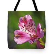 Pink Alstroemeria Flower Tote Bag