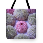 Pink And Green Urchins Tote Bag