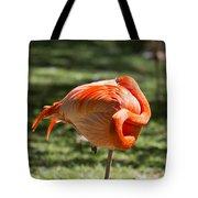 Pink And Orange Ball Tote Bag
