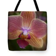 Pink And Orange Orchid Tote Bag