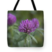 Pink And Pretty Clover Tote Bag