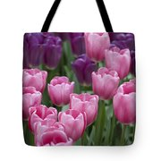 Pink And Purple Dutch Tulips Tote Bag