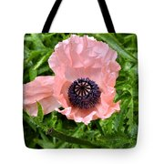 Pink And Purple Poppy Tote Bag