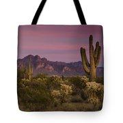 Pink And Purple Skies  Tote Bag