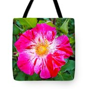 Pink And Red Striped Rose Tote Bag