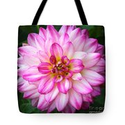 Pink And White Dahlia Square Tote Bag