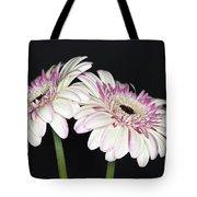 Pink And White Gerbera 2 Tote Bag