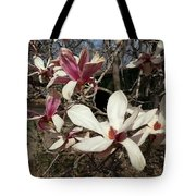 Pink And White Spring Magnolia Tote Bag