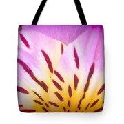 Pink And Yellow Peruvian Lily Tote Bag