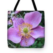 Pink Anemone Flower Tote Bag