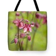 Pink Aquilegia Tote Bag