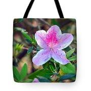 Pink Azalea Tote Bag