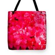 Pink Azalea's Tote Bag