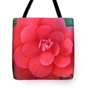 Pink Begonia Tote Bag