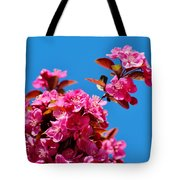 Pink Blossoms Blue Sky 031015a Tote Bag