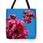 Pink Blossoms Blue Sky 031015aa Tote Bag