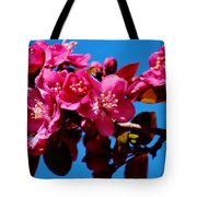 Pink Blossoms Closeup 031015a Tote Bag