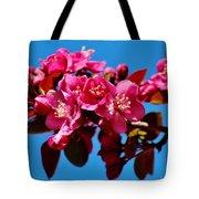 Pink Blossoms Closeup 031015ab Tote Bag
