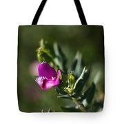 Pink Blush - Sweet Pea Bush  Tote Bag
