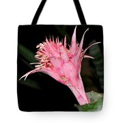 Pink Bromeliad Bloom - Close Up Tote Bag