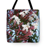 Pink Buds And Jasmine Blossom Close Up Tote Bag