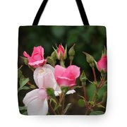 Pink Buds Starting To Open Tote Bag