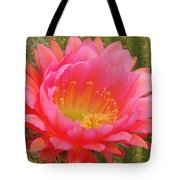 Pink Cactus Flower Of The Southwest Tote Bag