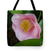 Pink Camellia About To Bloom Tote Bag