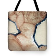 Pink Caryatid With A Blue Border Tote Bag